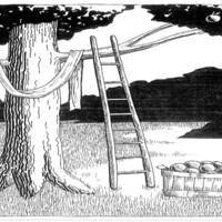 The Tree Fruit and Cross.jpg